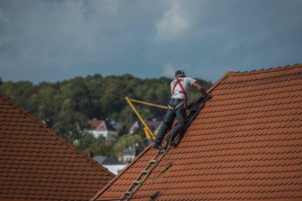 dakdekker spijkenisse